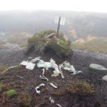 wreckage fragments of Bristol Blenheim L1476 on Bleaklow.