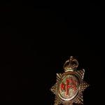 National Fire Service cap badge